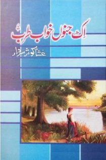 Ek Junoon Khwab Tarab By Ushna Kausar Sardar