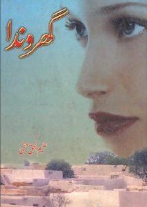Gharonda Novel By Aleem Ul Haq Haqi 1