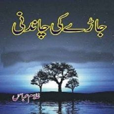 Jaray Ki Chandni By Ghulam Abbas 1