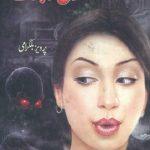 Muqaddas Taboot Novel By Pervez Bilgrami