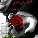 Gulab Ki Tehni Novel By A Hameed