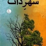 Shehar e Zaat Novel By Umera Ahmad