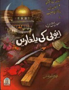Ayobi Ki Yalgharan by Muhammad Tahir Saqlain