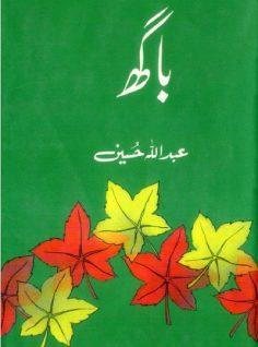 Bagh Novel By Abdullah Hussain Pdf Download