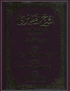 Sharah Al-Thameeri 04