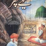 Geelay Pathar Novel By Muhammad Fayyaz Mahi