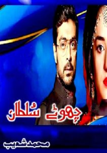 Chotay Sultan Novel By Muhammad Shoaib
