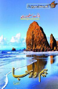 Beem O Raja Novel By Dr Saleem Khan