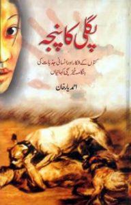 Pagli Ka Panja Novel By Sabir Hussain Rajpoot 1